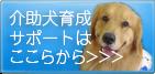 介助犬育成サポート